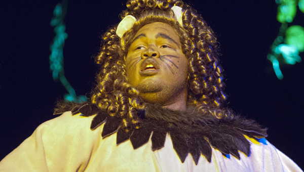 """Demopolis senior Tony Nicholson played the Cowardly Lion in the Tiger Arts Guild production of """"The Wizard of Oz"""" this spring."""