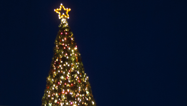 The tree atop Bryan W. Whitfield Memorial Hospital was lit Wednesday evening.