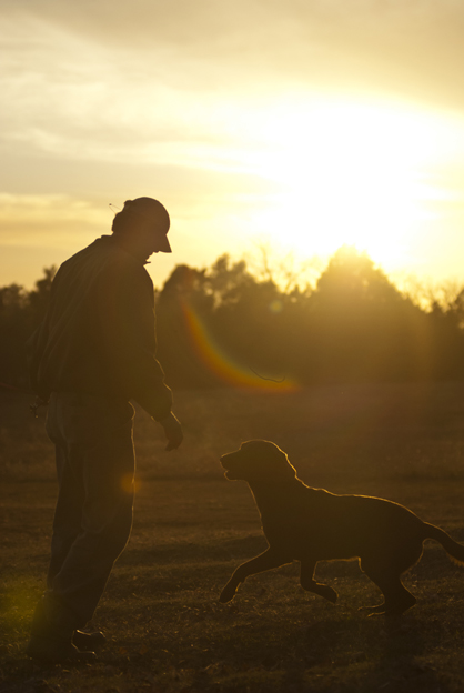 Brandon Smith is shown late one afternoon working with a dog just before sunset.