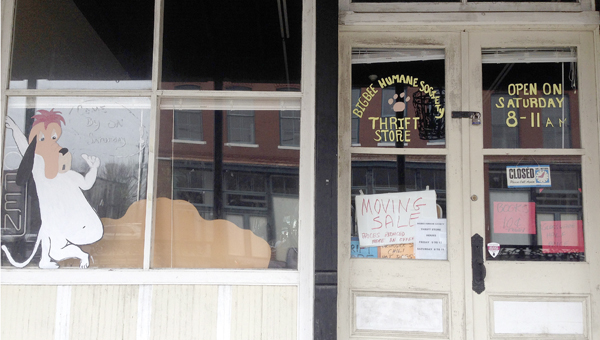 The Bigbee Humane Society Thrift Store is currently open from 8-11 a.m. on Saturdays.