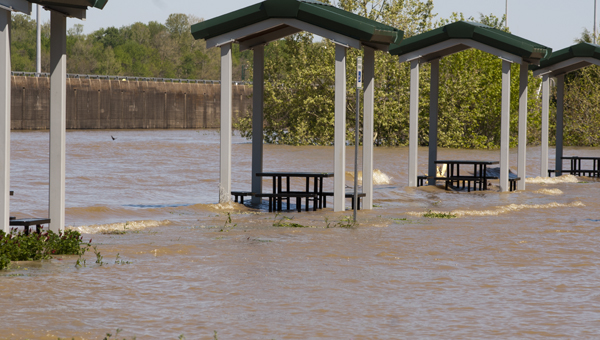 The waters of the Tombigbee River below Demopolis Lock and Dam have risen into the back parking lot at Spillway Falls Park.