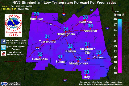 The National Weather Service in Birmingham has predicted an overnight low of 32F in Demopolis.