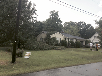 Two homes on Herbert Street had trees fall on them.
