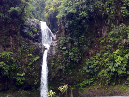 A waterfall along the La Paz river in Costa Rica.